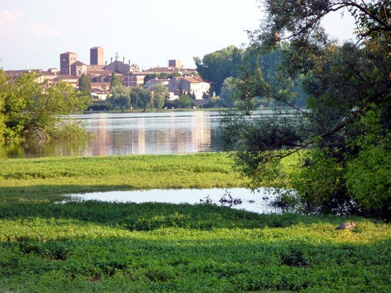Uno scorcio del Parco del Mincio, in Lombardia