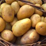 Le patate nel cestino