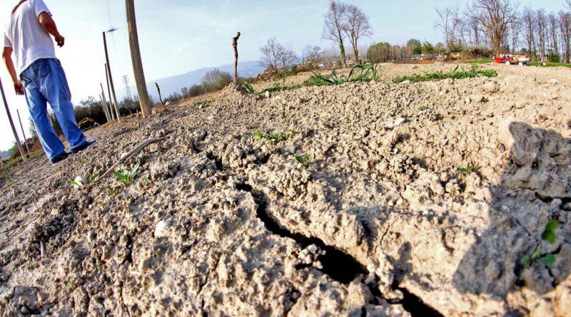 Campi inariditi a causa della siccità
