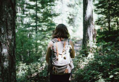 Estate fra i boschi: rispettiamo la natura